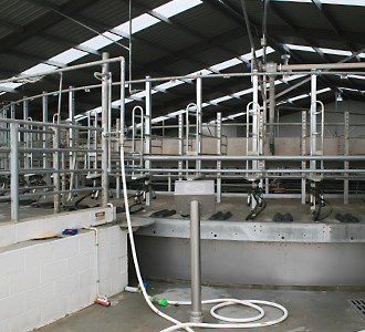 Dairy Rotary Shed